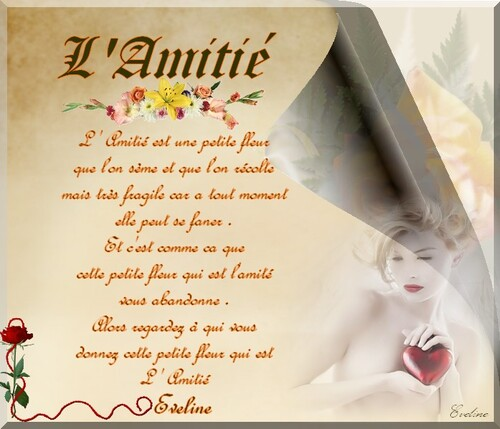 L'Amitié (Ecrit par moi + création )