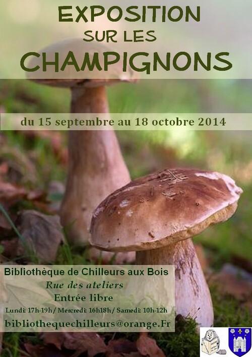 Exposition de livre sur les champignons, baies et nature