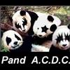 panda cdc.jpg