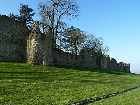 Château de Pouzauges (5)