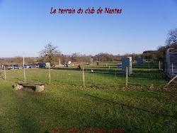 2010 - Saint Mars du Désert (44) - Bord de terrain