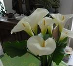 Voici un joli bouquet !