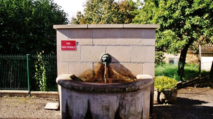 Fontaine - Champagnac-la-Noaille