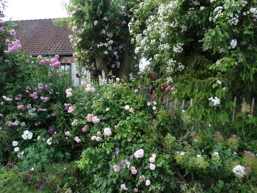 Le jardin en fête