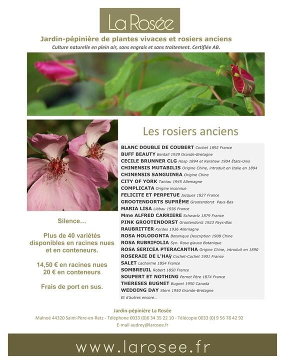 Pépinière La Rosée  La Malnoë