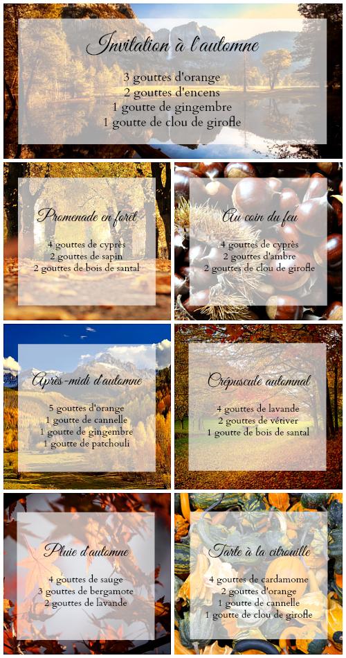 7 mélanges pour diffuseur d'huiles essentielles - automne