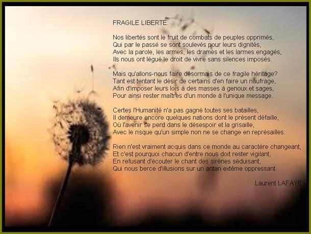AUTEUR : Laurent LAFAYE.