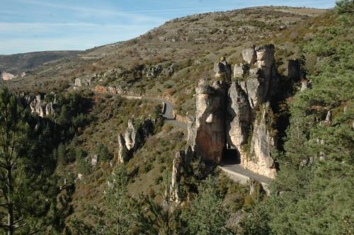les gorges de la Jonte en aval de Meyrueis