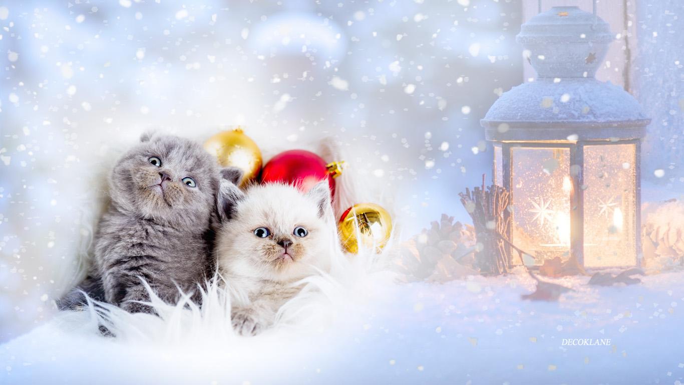 Fond d 39 cran hiver dka decoklane for Fond ecran gratuit pour ordinateur hiver