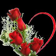 ♥♥♥ Joyeuse St Valentin à tous les amoureux de la terre ♥♥♥