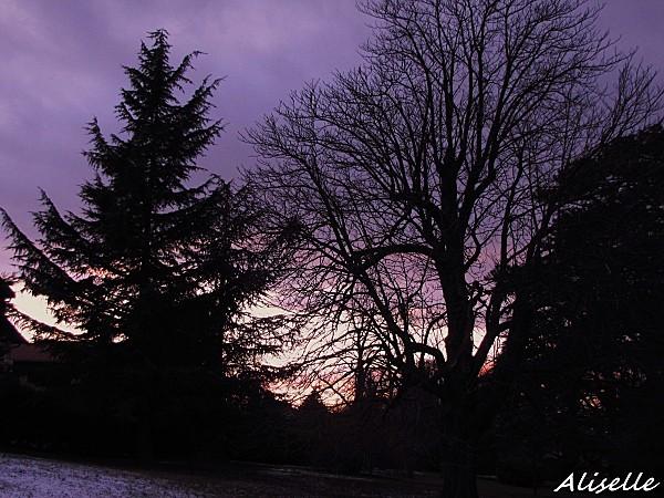 Soleil-couchant-01-02-2010-17h45.jpg