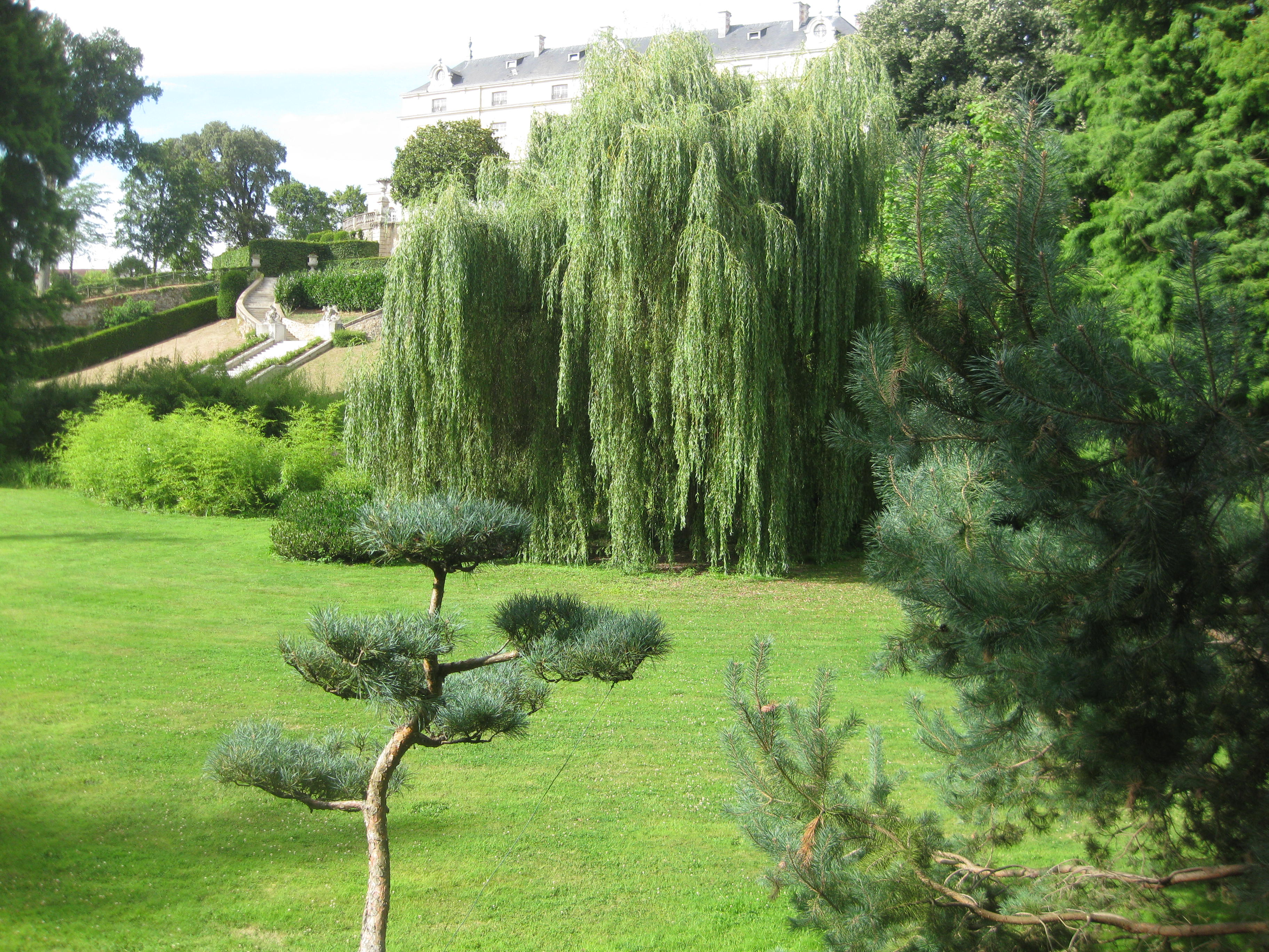 Le plus grand jardin japonais d 39 europe 29 ha milfontaines for Jardin japonais cholet