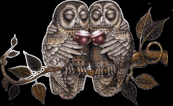 Oiseaux - chouettes (birds- owls)