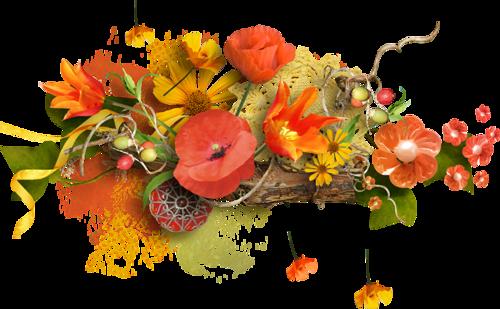 Ornements Floraux Série 37