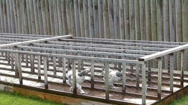 15 juillet parc de jasper