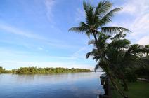 La côte caraïbes