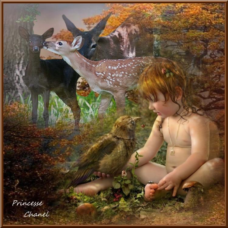 L enfant et l oiseau ( 2 créas)