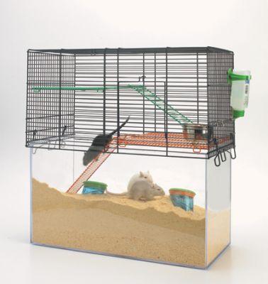 les types de cages pour un hamster russe le hamster russe. Black Bedroom Furniture Sets. Home Design Ideas