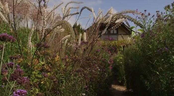Jardin Jardinier : Le Jardin Plume