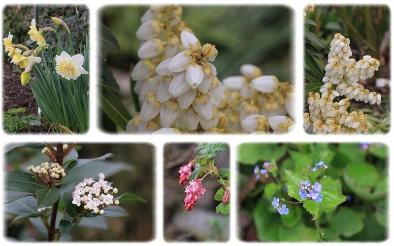 Un printemps bien tristounet