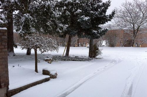 Neige de décembre