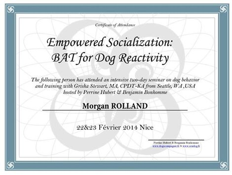 Behavior Adjustment Training - BAT -
