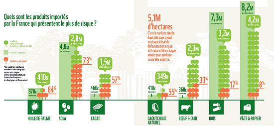 Infographie deforestation importee wwf