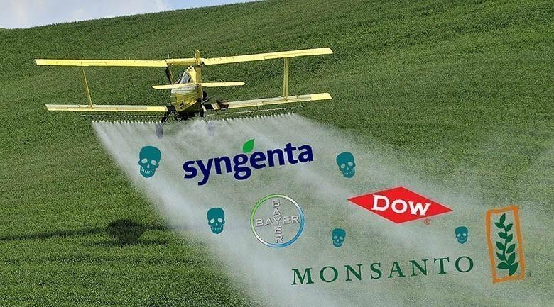 Pesticides : le rapport embarrassant de l'Anses si peu médiatisé