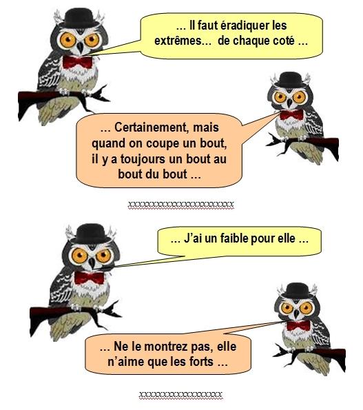 les-chouettes-chouettes-208