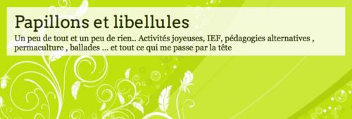 Blogs de familles IEF: Papillons et libellules