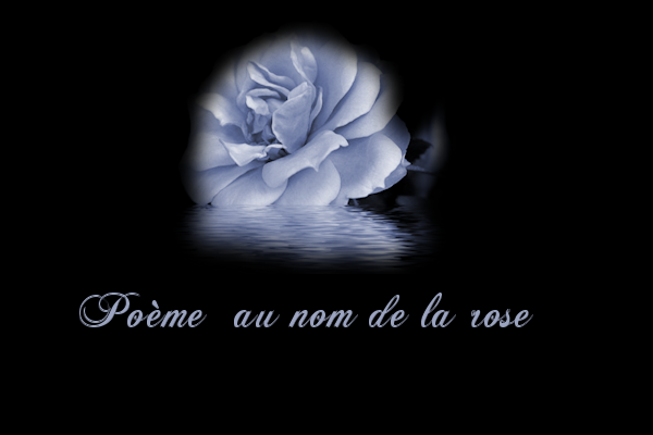 78 Rosebleue33