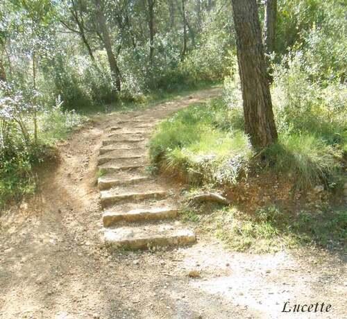 Promenade dans le parc naturelC de la Valmasque au dessus d'Antibes