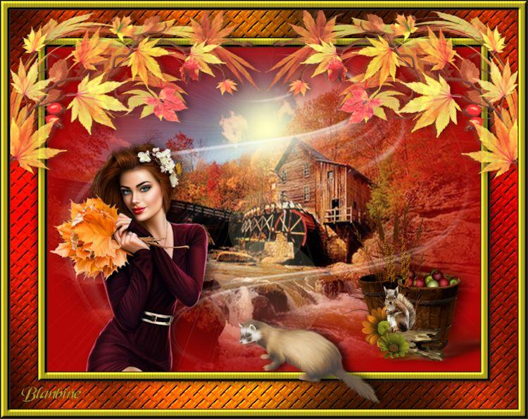 43. Agréable automne