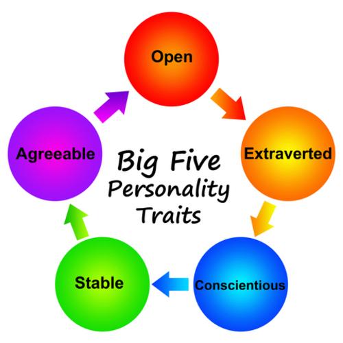 """Qu'est ce que le """"Big five""""."""