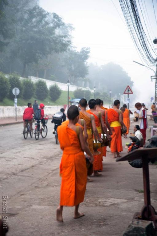 offrandes aux moines à Luang Prabang