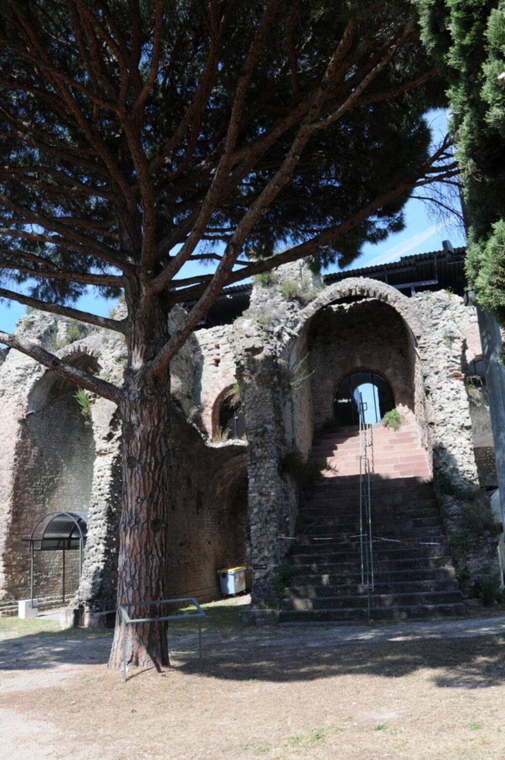 L'Aphithéâtre ou arêne de Fréjus