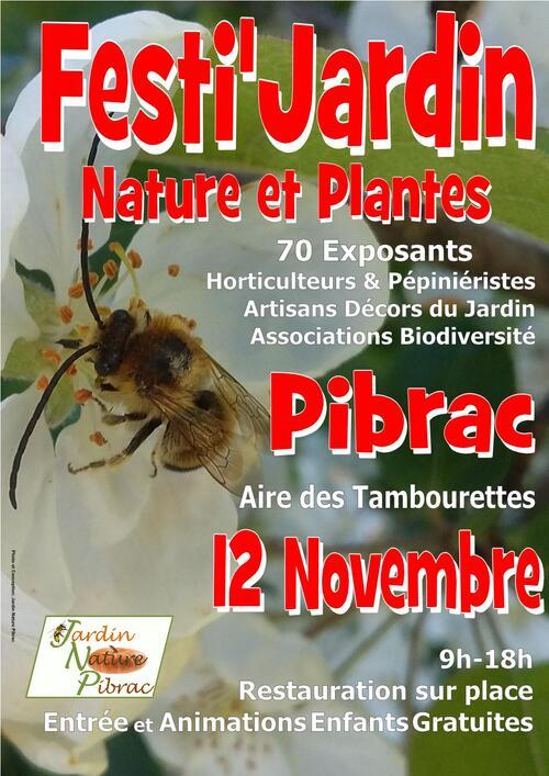 12 Novembre 2017 Festi Jardin PIBRAC 31