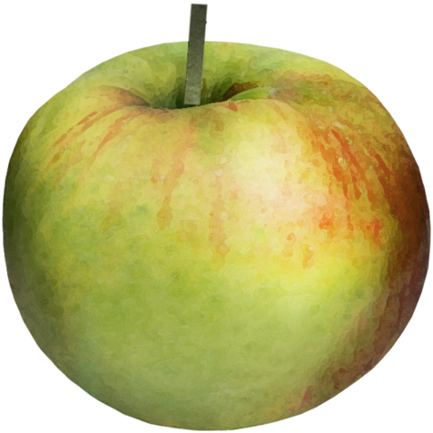 lmurphy-charm-ep_apple-red.png