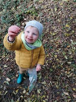 -Petite balade dans les bois