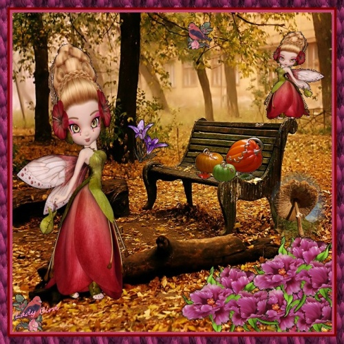 et oui c'est l'automne et ses belles couleurs