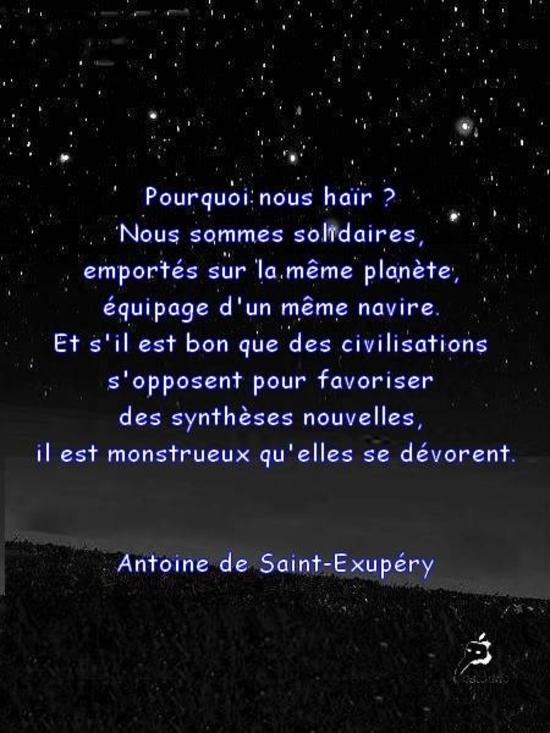 Citation En Image Pourquoi Haïr St Exupéry Le Jardin De