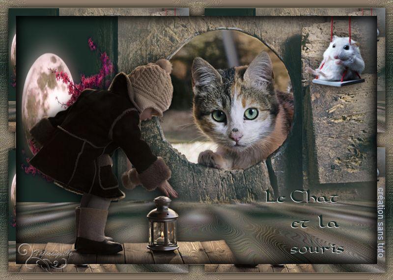 *** Le chat et la souris ***