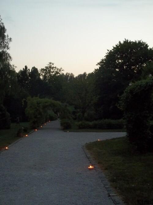 La Roseraie au Crépuscule