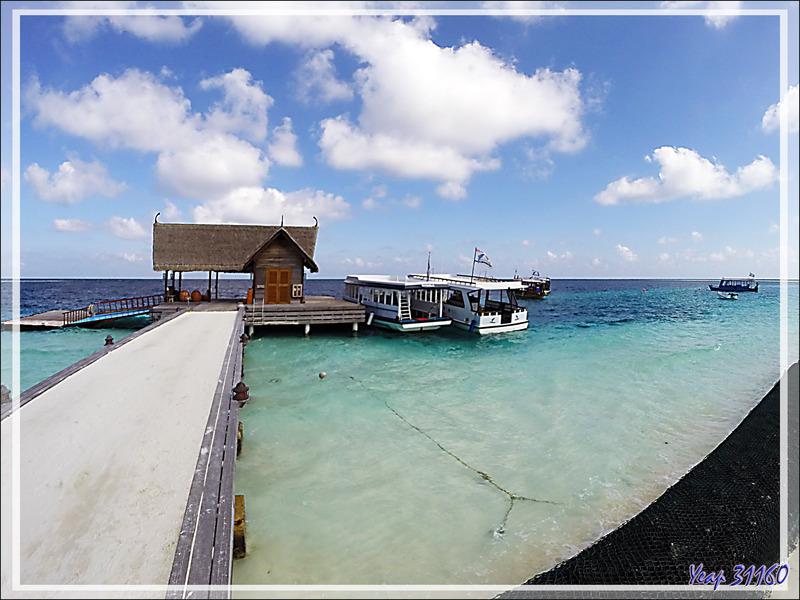 Départ pour une plongée avec les sublimes raies Manta en espérant qu'elles seront présentes sur leur station de nettoyage - Moofushi - Maldives