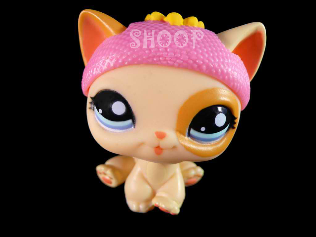 LPS 1521