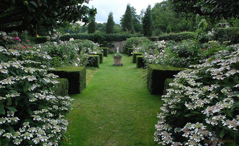Pashley Manor Gardens 1