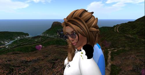 Si vous desirez venir sur Second Life