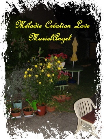 jardin-love-Nuit-MA-copiry.JPG