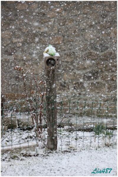 Ciel---temps 2737 neige 19 mars