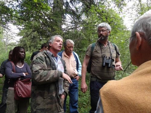 Une belle balade en forêt Châtillonnaise pour suivre le chemin de l'eau...